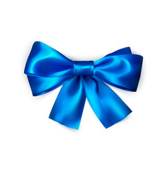 blue bow isolated on white background realistic vector image