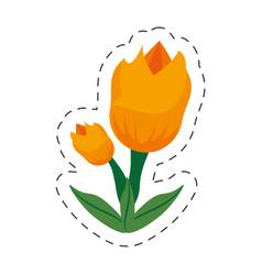 Cartoon tulip flower image vector