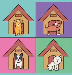 little dogs adorable with wooden houses vector image