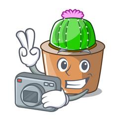 Photographer cartoon star cactus in flower pot vector