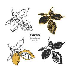 set cocoa logo nature symbol vector image