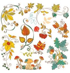 set decorative autumn branches leaves vector image