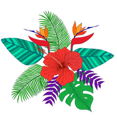 tropical bouquet palm leaves hibiscus flower vector image