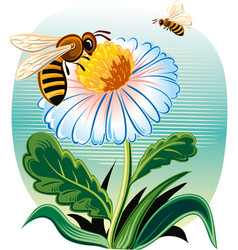 worker bee vector image