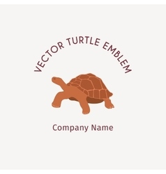 Turtle logo template vector image vector image