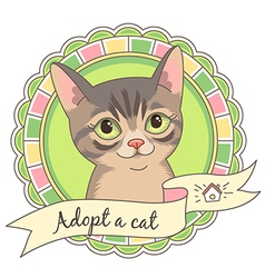 cartoon adopt cat vector image