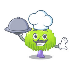chef with food green tree willow on the character vector image