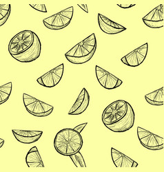 citrus set seamless backgroundsketch by hand vector image