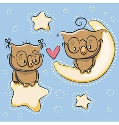 Cute Lovers Owl vector image
