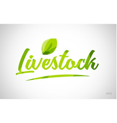 Livestock green leaf word on white background vector