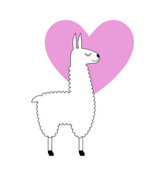 Llama with pink heart vector