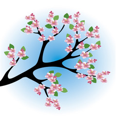 Peach blossoms vector