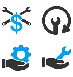 Service Tools Flat Bicolor Icons vector image