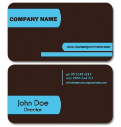 simple business card vector image