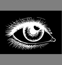 Eye on black background eyes art woman eye the vector