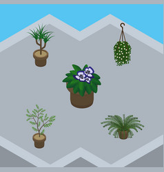 Isometric flower set of flowerpot houseplant vector