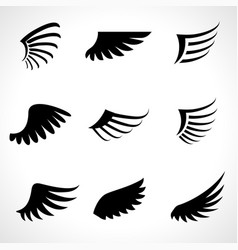 wings icons set isolated on white background vector image vector image