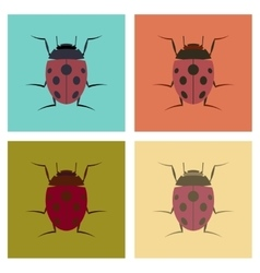Assembly flat insect ladybug vector