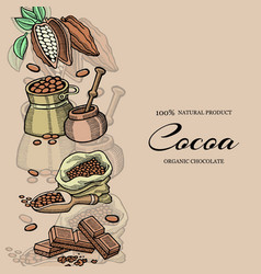 chocolate cacao and cocoa beans banner vector image