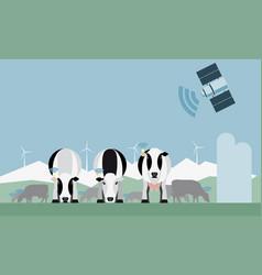 Control of a dairy farm via satellite vector