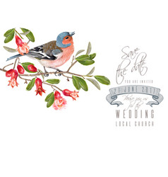Finch pomegranate branch card vector
