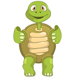Funny Turtle Funky vector