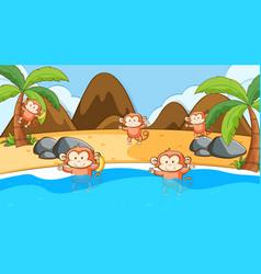 scene with monkeys in sea vector image