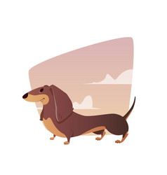 a vivid of the dachshund vector image