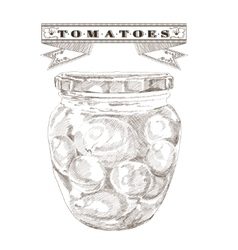 Bank of tomatoes vintage vector image