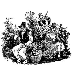 Vine pickers vector image vector image