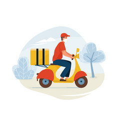 Delivery service fast safe vector