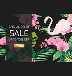 Exotic orchid flowers jungle leaves sale banner vector