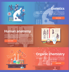 Genetics human genome human anatomy anatomical vector