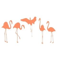 Pink flamingo bird postures silhouette vector image