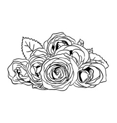 Roses line art 01 vector