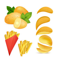 snacks or chips pictures vector image