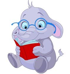 Cute Elephant Education vector image vector image