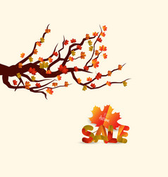 autumn sales banner with colorful leaves on a vector image