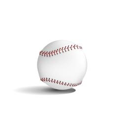 Baseball tool vector image