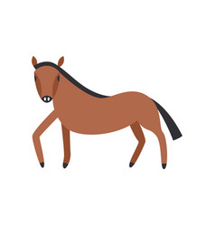 bay horse full length isolated on white background vector image