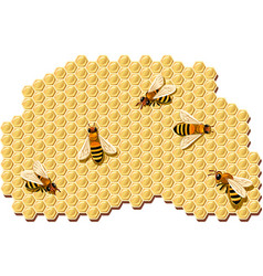 Bees producing honey vector