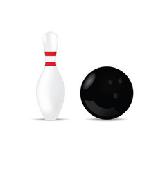 bowling ball in black color and skittle vector image