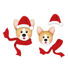 corgi santa claus santa hat red scarf isolated on vector image