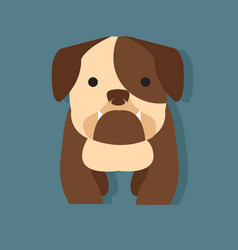 cute bulldog flat style vector image