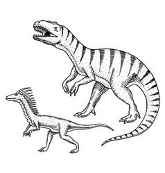 dinosaurs tyrannosaurus rex velociraptor vector image