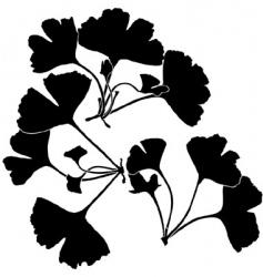 gingko balboa silhouettes vector image