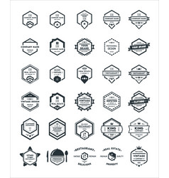 30 set of hexagon vintage hipster badge logo vector image