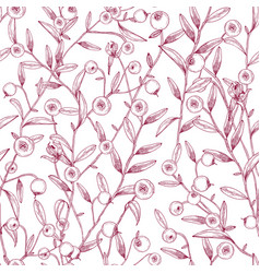 beautiful seamless pattern with cranberries vector image