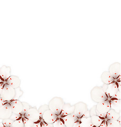 bstract border made in sakura flowers blossom vector image