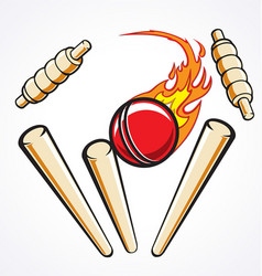Cricket wicket stumps flaming ball out vector